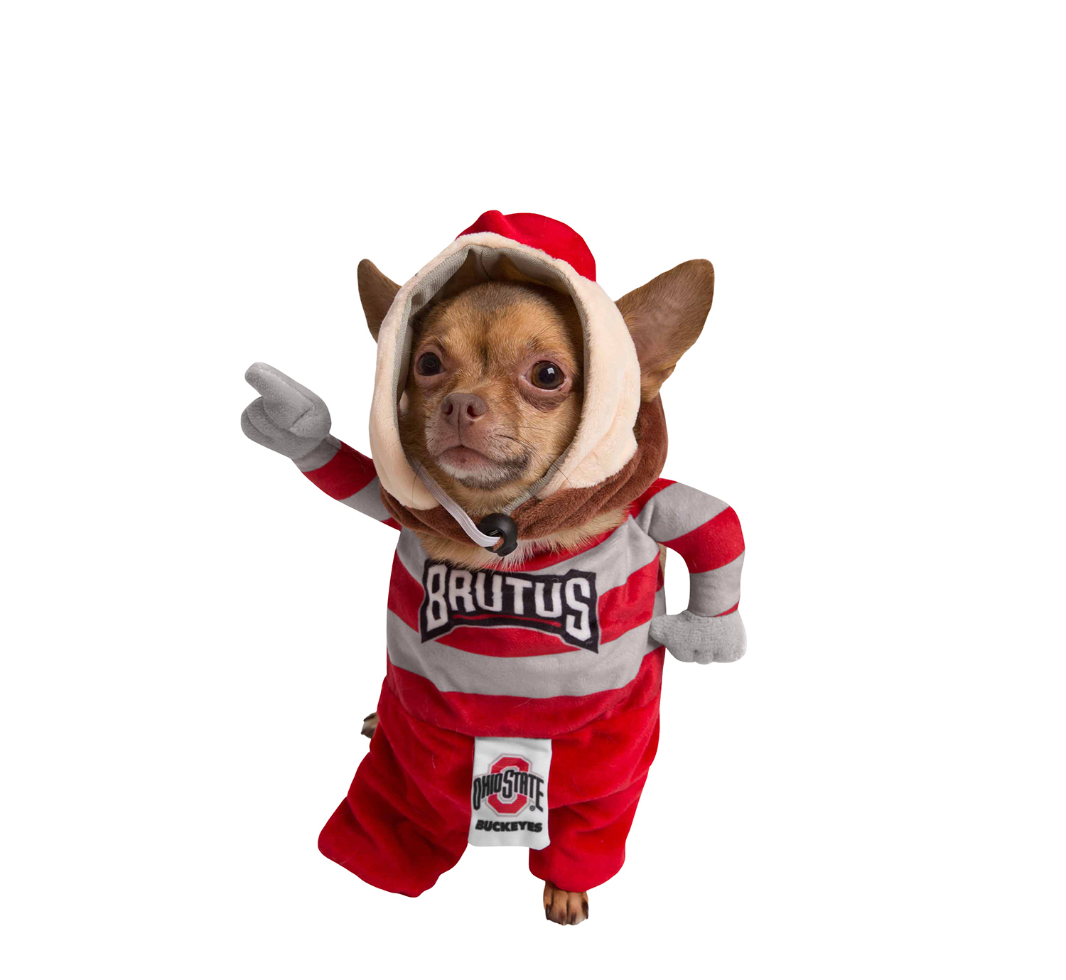 Size XL Extra Large Pet Dog Cat Funny Ohio State Buckeyes Football Brutus The Buckeye Mascot Jersey Shirt Clothes Apparel Costume Mask Hood