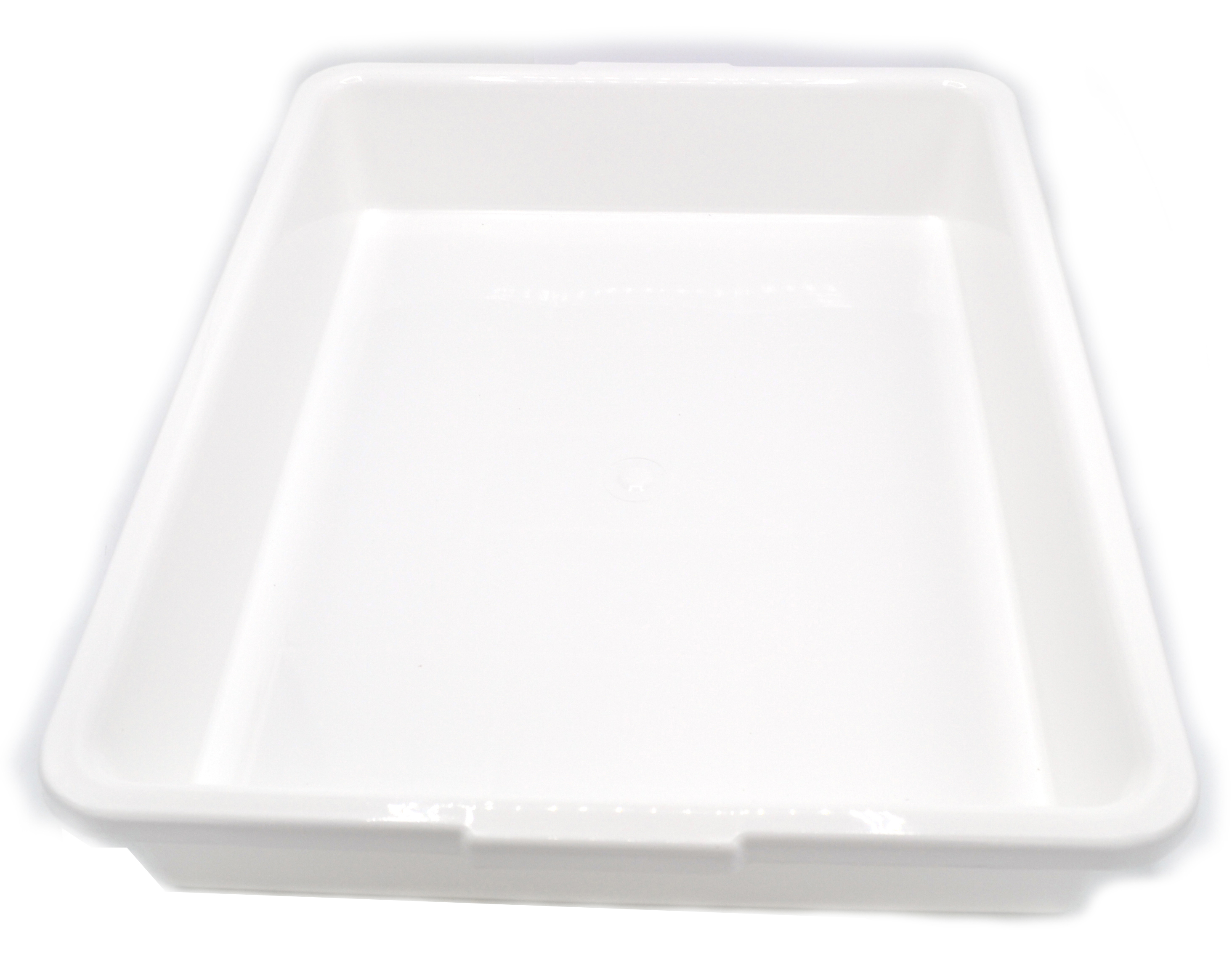 Stainless Steel SALE Shell Gastro Tray CA 33,5 x 23,5 x 1 cm Plate 86